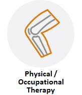 Physical / Occupational Therapy